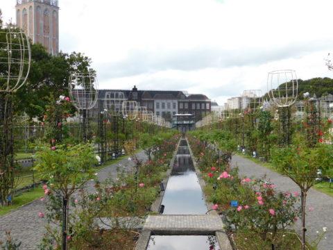 ハウステンボス昼の花畑